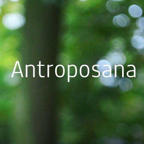 Antroposana BackOffice